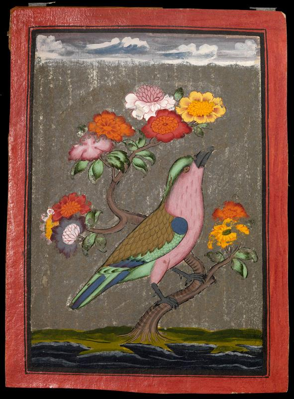 Bird seated on a flowering branch