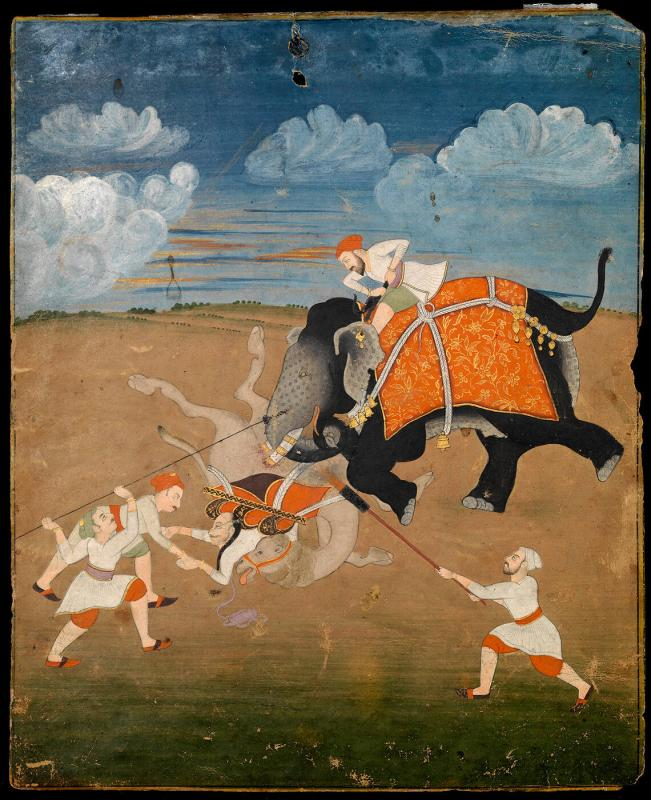 Elephant attacking a camel with its riders and three attendants present with a desert-looking background (no border)