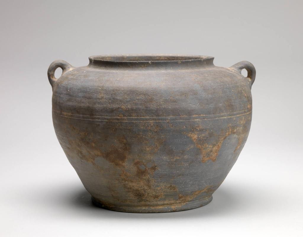 Pot with side handles