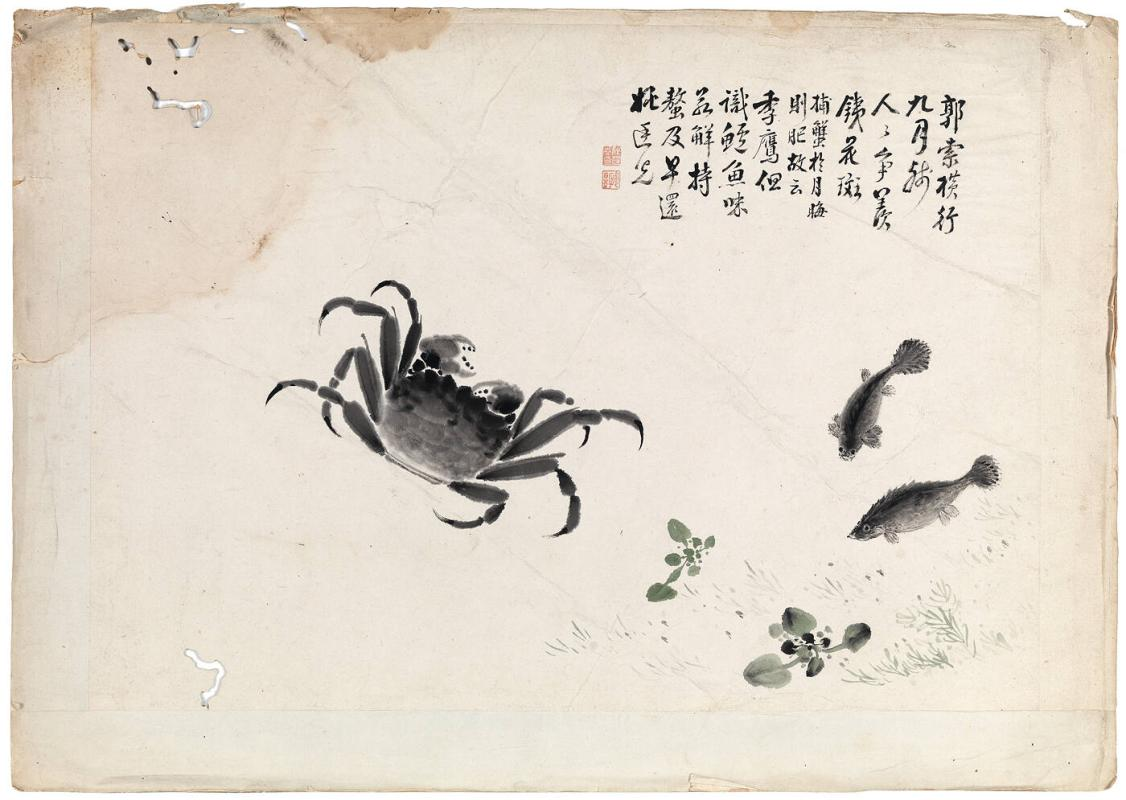 Studies of crabs and carp in water