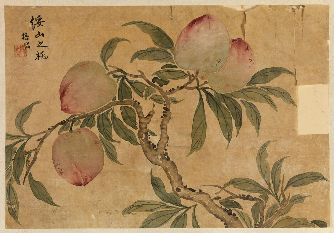 Branches with fruit