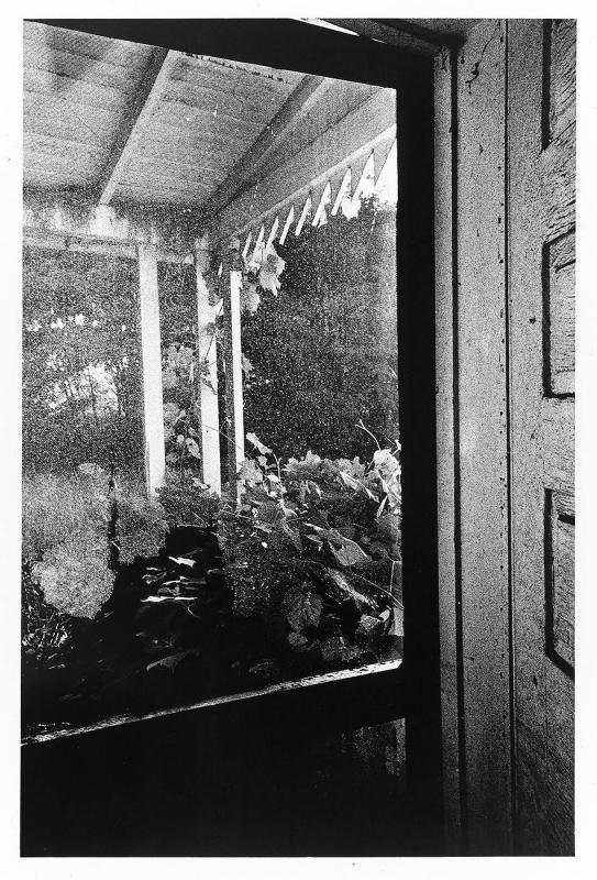 "Doorway/Porch (from ""Somnambulist"")"