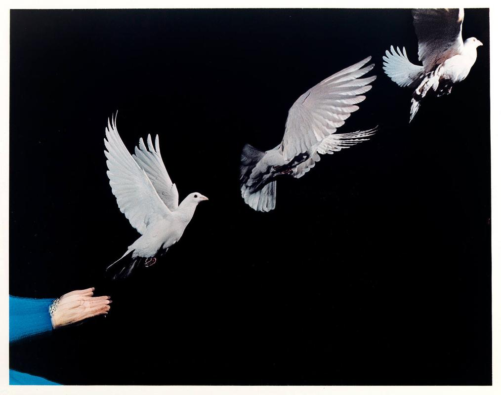 "Piegon Released, 1965 (from ""Ten Dye Transfer Photographs"")"