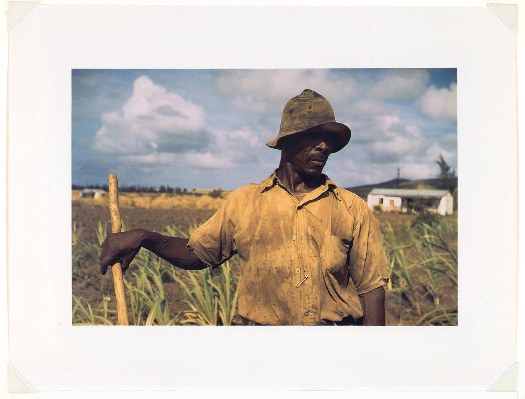 Farm Security Administration borrower, vicinity of Frederiksted, St. Croix, Virgin Islands